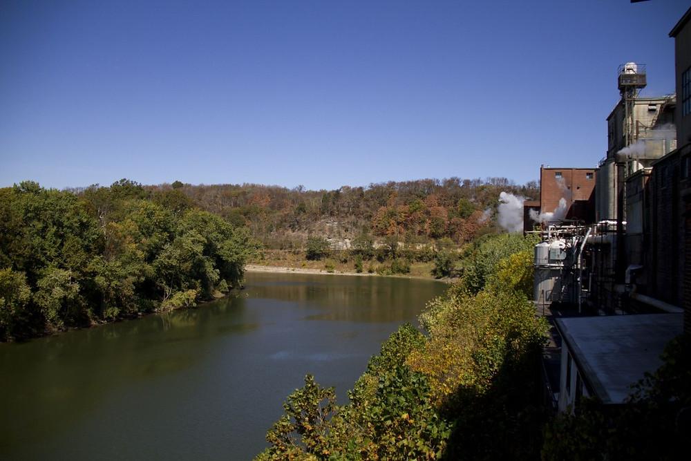 Buffalo Trace on the Kentucky River