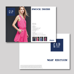 GAP subscription brouchure