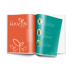 Haven magazine Advertorial