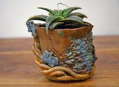 Plant Pot 5.jpg