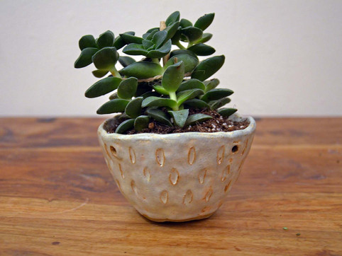 Plant Pot 3.jpg