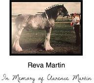 Reeva%20Martin_edited.jpg