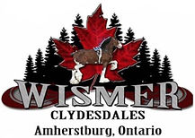 Wismer%20Clydesdales%20-%20Class_edited.