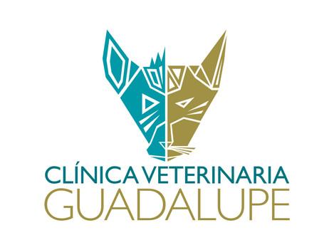 Clínica Veterinaria Guadalupe