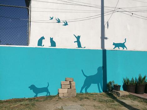 Animales en Fachada