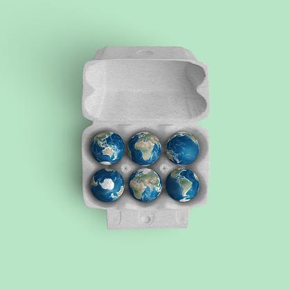 Small Earth in egg carton.
