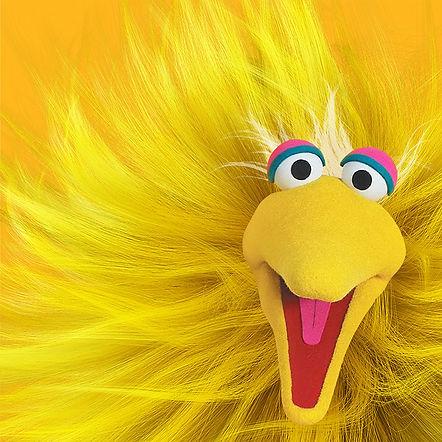 Big_Bird.jpg