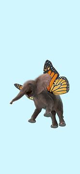 Flying elephant.