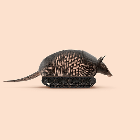 3D Armadillo with armour