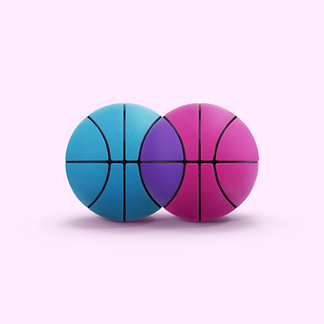 Basketball Venn Diagram