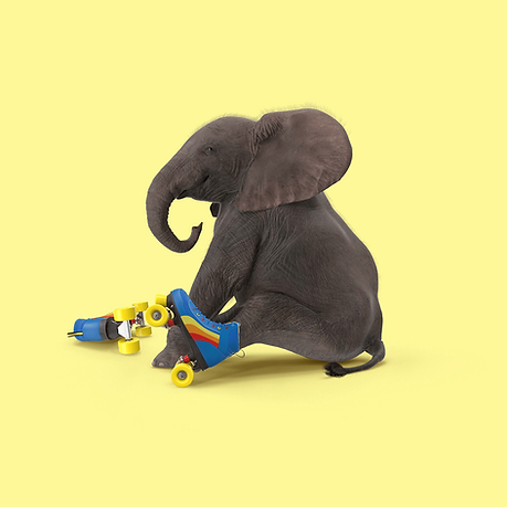 Baby elephant with roller skates