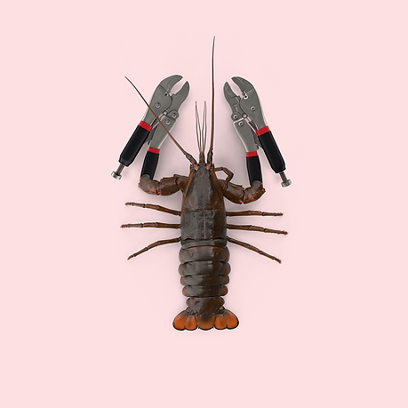 Lobster with vice grips.