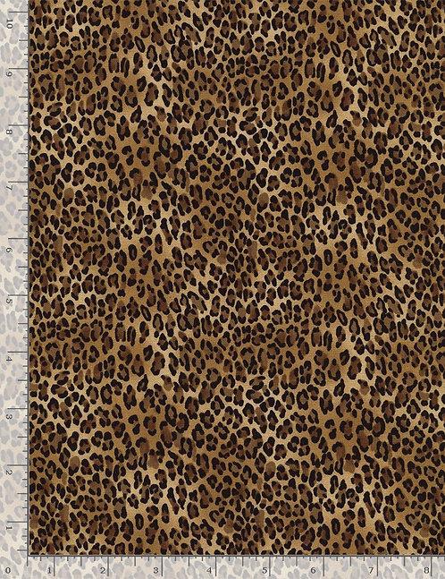 Safari by Timeless Treasures - Tiny Leopard - Wild C2722