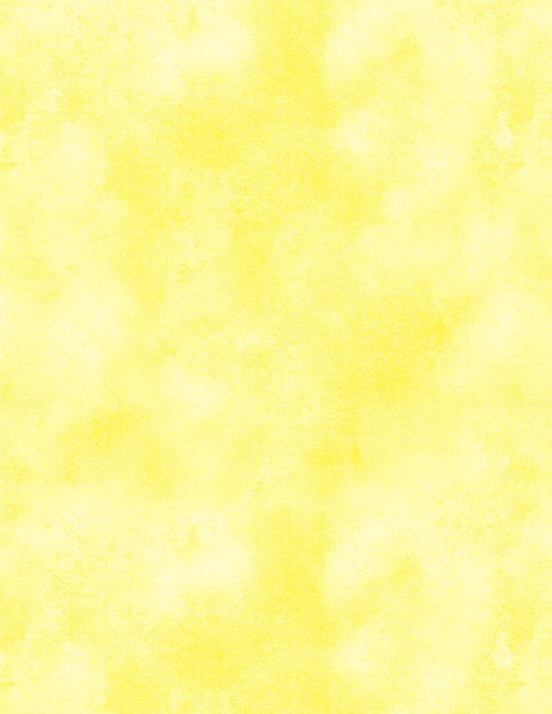 Essentials - Washart by Wilmington - Yellow 1817-39080-500