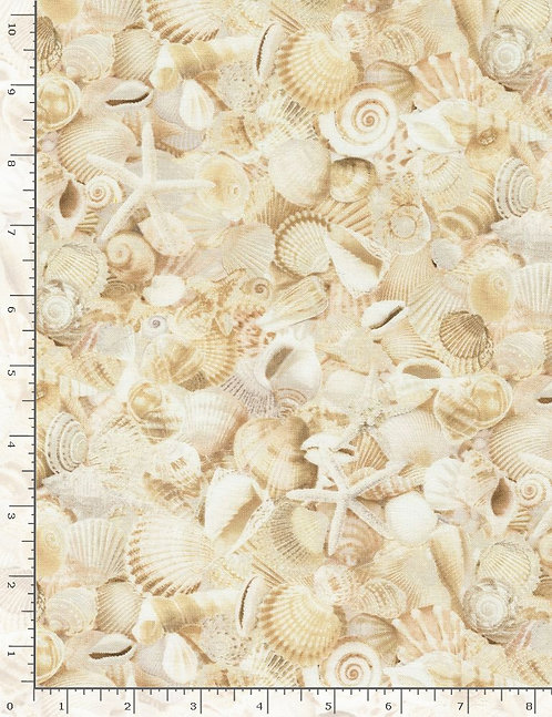 Beach Is My Happy Place - Packed Seashells - Natural
