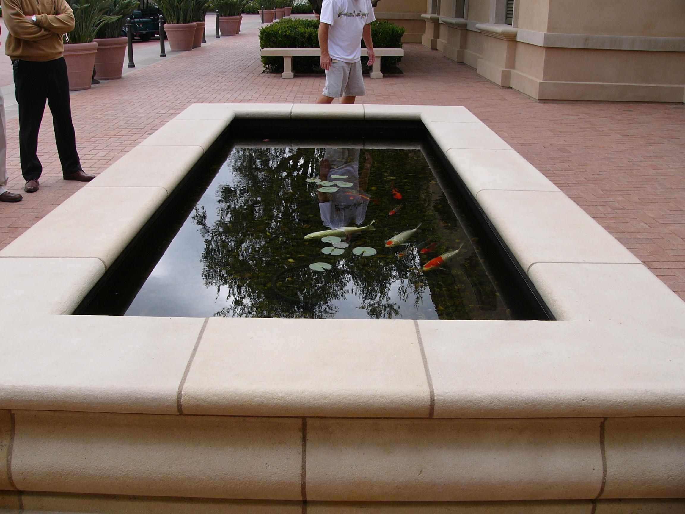 TR103: Coy Pond