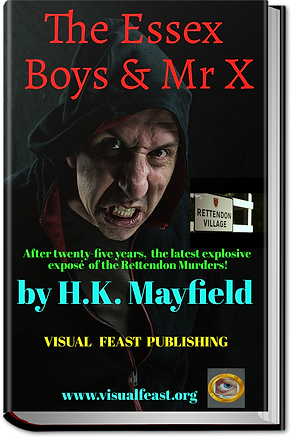 Laest Mr X cover_800x1200 (2).png