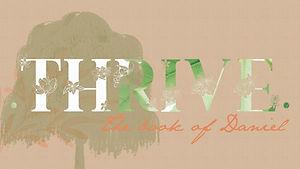 Thrive Series_2a.jpg