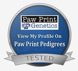 Pacific Doodles Paw Print Genetics