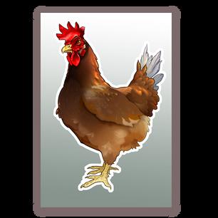 Chicken graphics