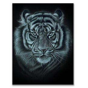 White on black Tiger
