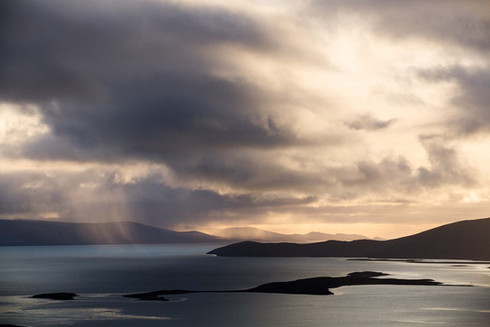 Hill Cove, West Falklands
