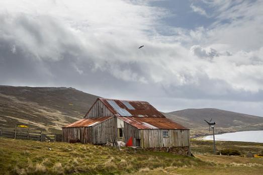 Carcass Island shearing shed