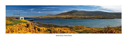 Weddell Island