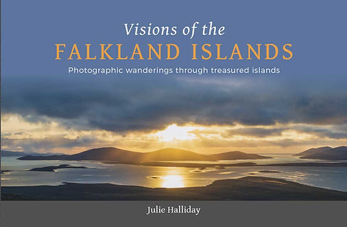 Vision of the Falkland Islands