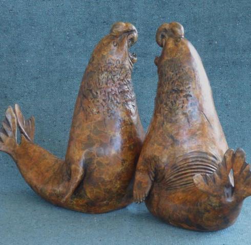 Elephant Seals - Stephen Massam