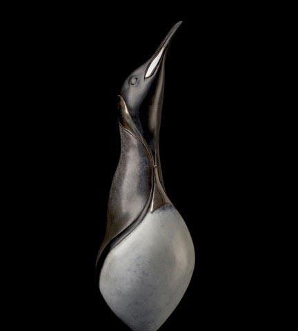 King Penguin Portrait - Stephen Massam