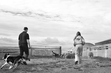 Hope Cottage Farm