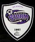 Purple New Logo - Pre-Academy.jpg