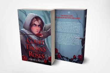 Fan Book Cover