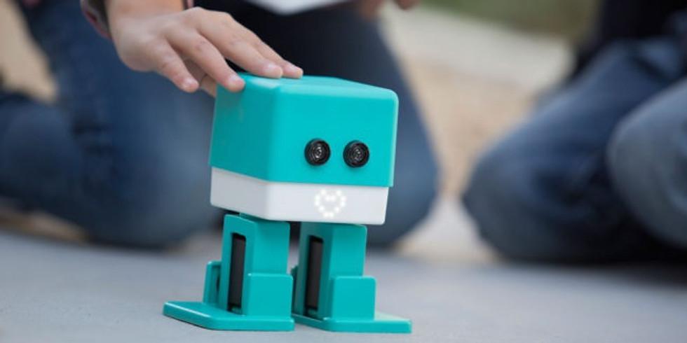 Robot Camp 3 - JR