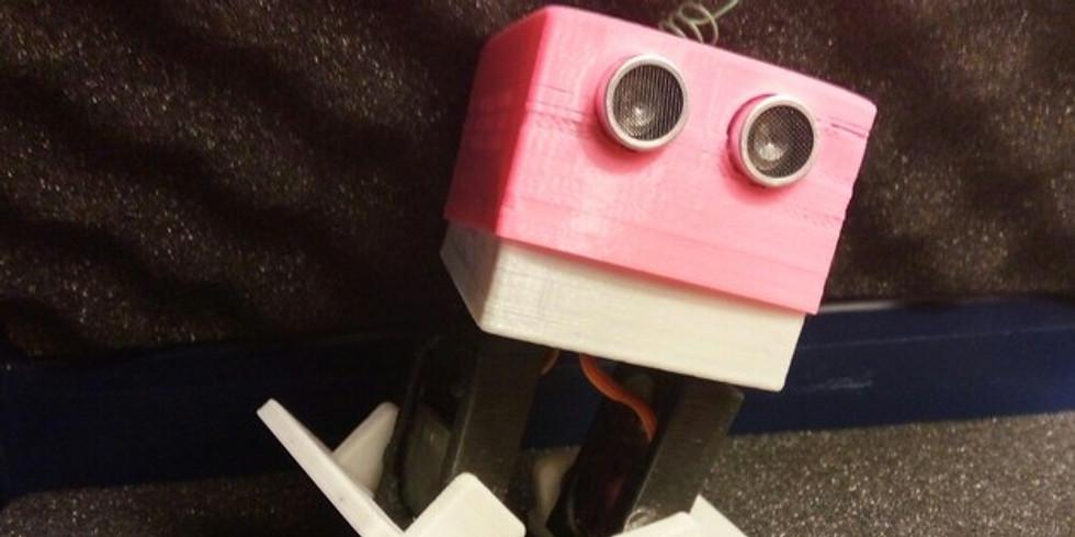 Robot Camp - JR