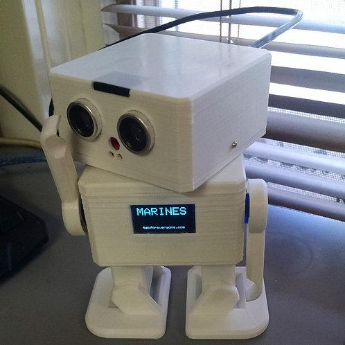 T4E BiPed Robot