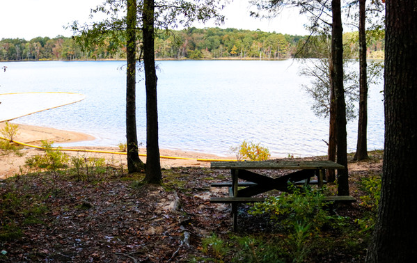 Private Swimming Area