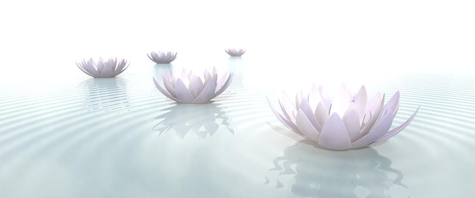Janani Meditation Lotus.jpg