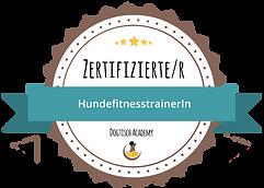 fit_siegel_zert.PNG