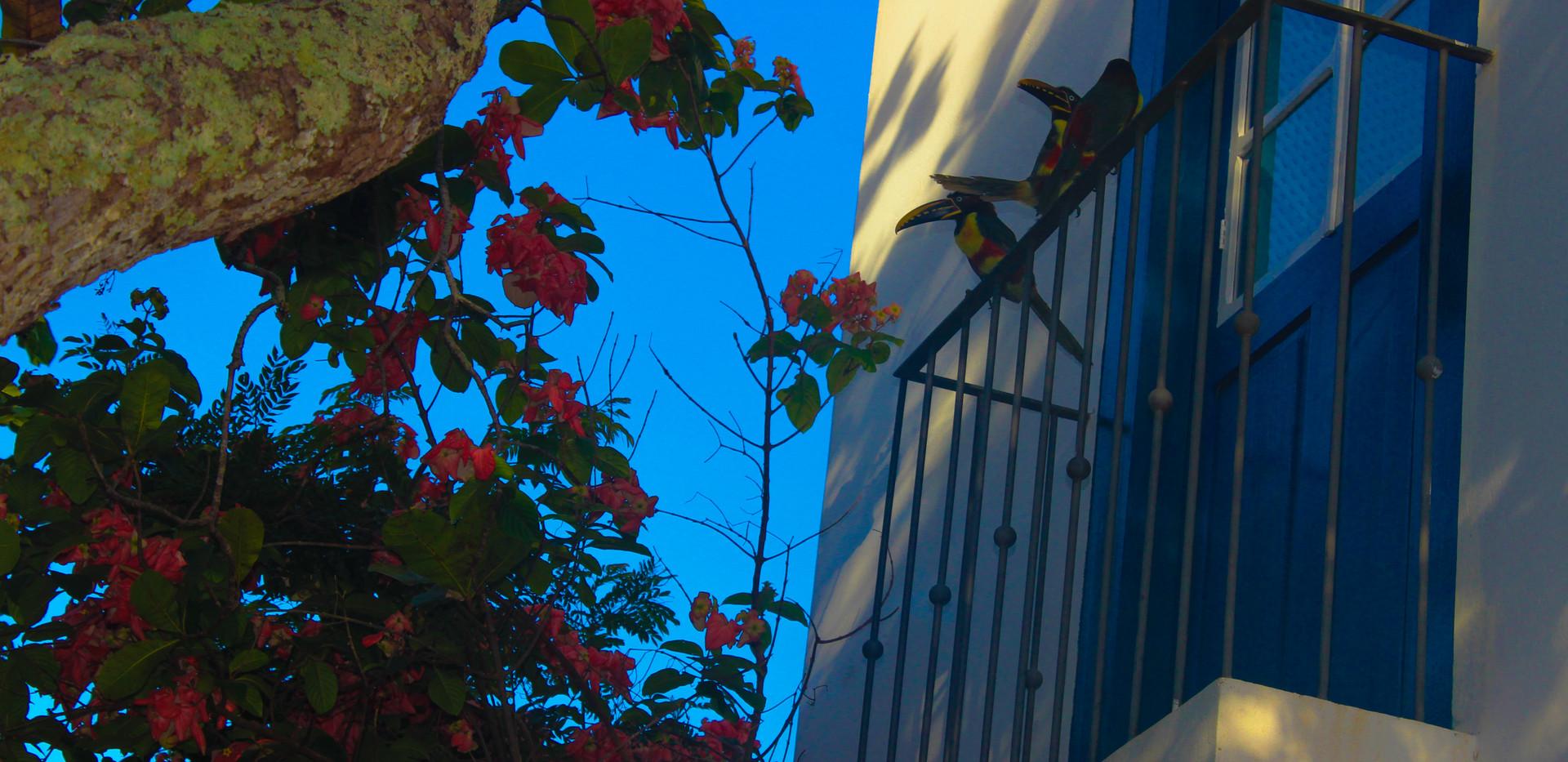 Villa Bia - Bloco Azul, sacada.jpg