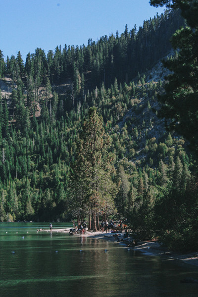 A hike along the lakeside path took us weaving through trees, climbing rocks, along the water's edge and past campsites, into the land of the black bear. Where we finished, Emerald Bay beach in Lake Tahoe.
