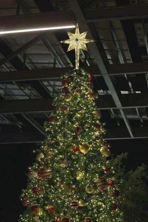 Denisse Leon - christmas tree.jpg