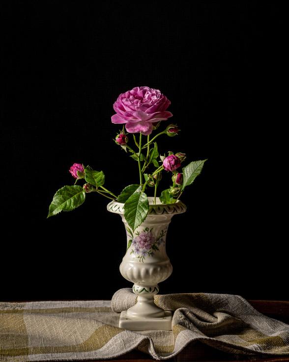 Roses dans un vase peint par Claudine Dousse