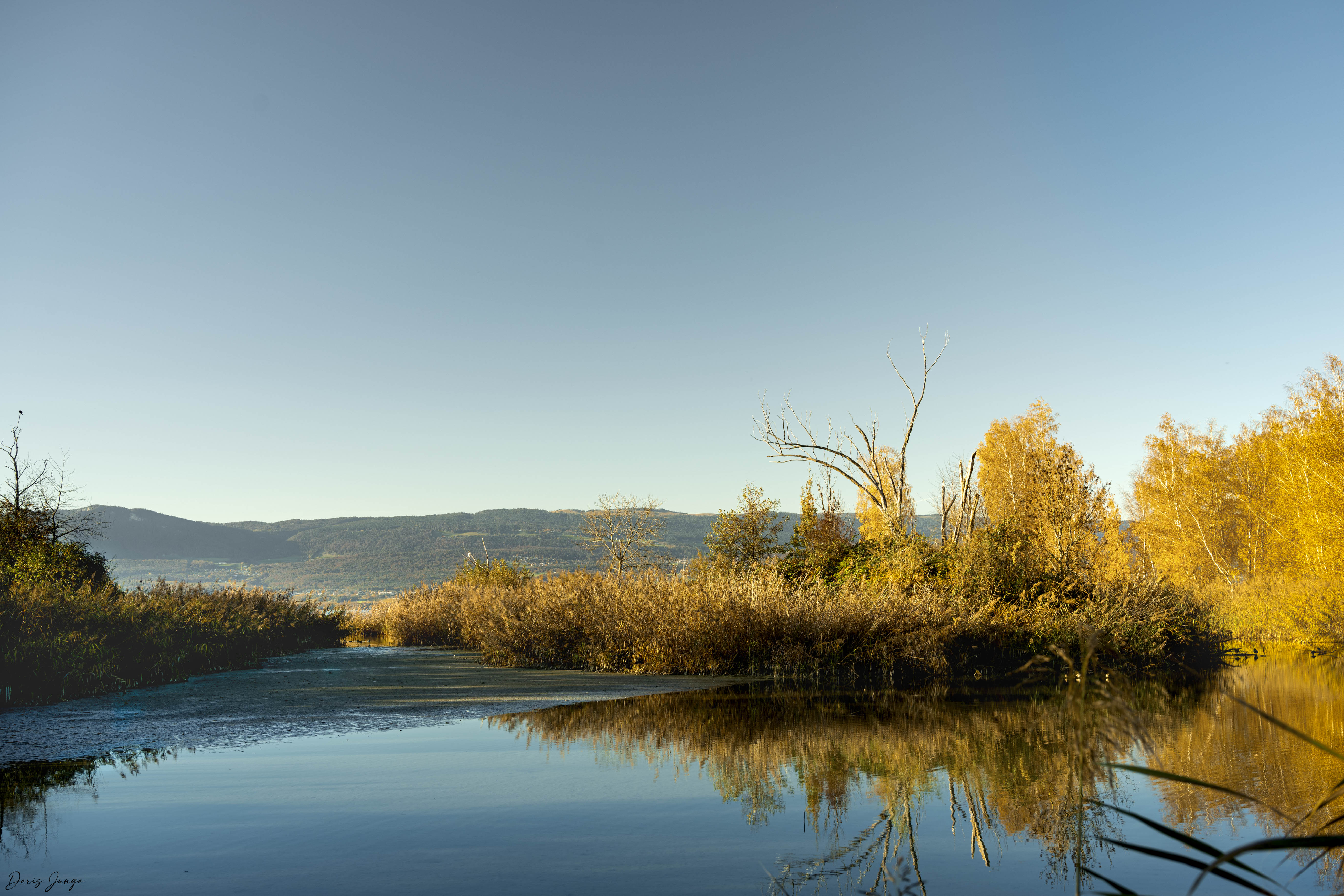 Le bord du lac de Neuchâtel