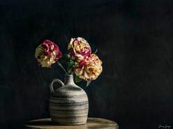 Roses créées par Philippe Dousse