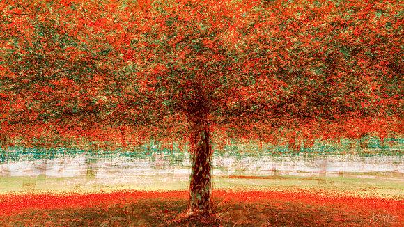 PAPRIKA TREE (alu)