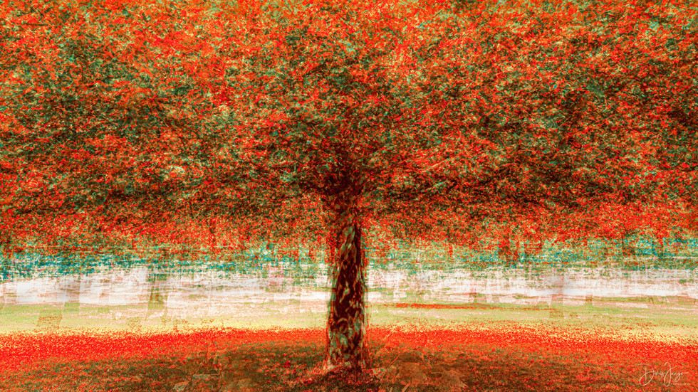 Paprika Tree