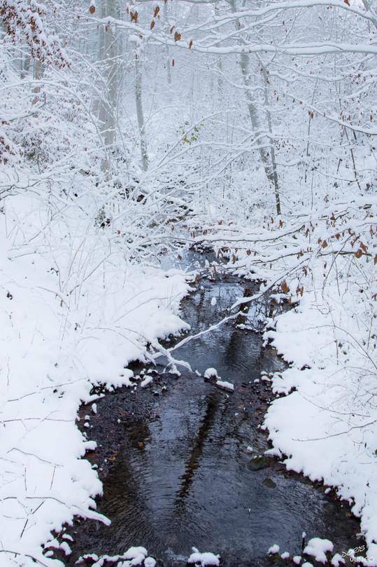 Ruisseau Vers-chez-Perrin
