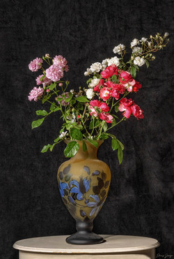 Les trois branches de rosiers du Jardin